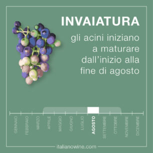 Invaiatura IT