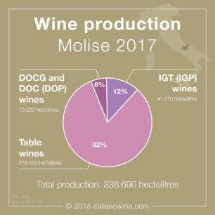 Produzione vino Molise 2017 EN wine productionroduction