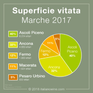 Superficie vitata Marche IT